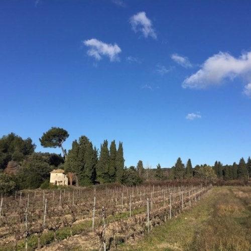 Provence Gardoise