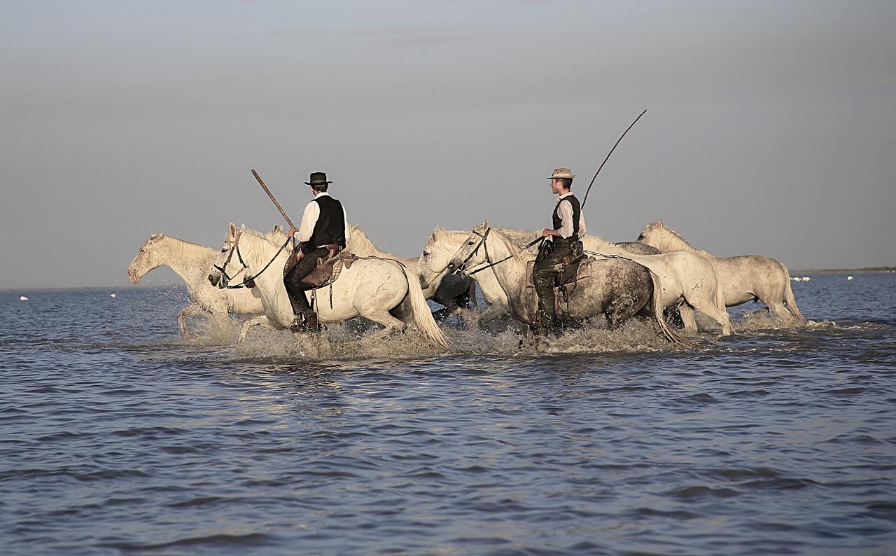 En Camargue, gardians à cheval